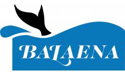 Balaena H2O, LLC